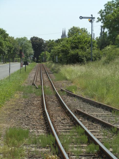 """De Döllnitzbahn kende vroeger veel goederenverkeer. Vooral kleiaarde (""""Kaolin"""") werd omgeslagen. In Oschatz is nog een groot emplacement aanwezig, dat echter al aardig begint te verroesten en overwoekerd te raken. Station Mügeln werd zelfs - naar verluidt ten onrechte - aangeduid als het grootste smalspoorstation van Europa met maar liefst 38 sporen. In Oschatz liep nog een stukje derde rail, zoals op de foto is te zien. Het sein is niet meer in gebruik. Op de achtergrond de torens van de St. Aegidienkiche in de rustige maar fraaie binnenstad van Oschatz."""