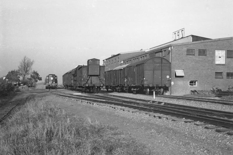 Hallum met de 2429 eveneens rangerend op 1 november 1966. Tijdens de aardappelcampagne in de herfst en winter reden niet zelden treinen met vijftig wagons op de NFLS-lijnen. Soms waren drie tot vier treinen nodig om al de wagons te plaatsen en beladen weer naar Leeuwarden te brengen op weg naar het buitenland.