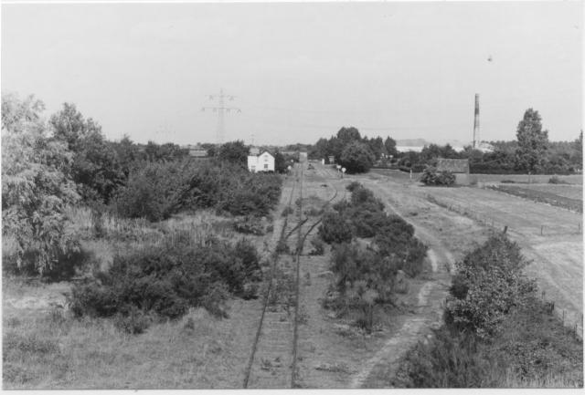 Kruispunt Beugen, gezicht op het voormalig emplacement vanaf de spoorlijn Nijmegen - Venlo; gezicht richting Gennep. Het is alweer vier jaar geleden dat hier de laatste trein passeerde.Hebt u belangstelling voor andere foto's uit het SNR/NVBS-foto-archief? http://nvbs.com/Documentatie/Fotobureau.htmFoto: foto 5394.1070 A Periode: 13 juni 1976