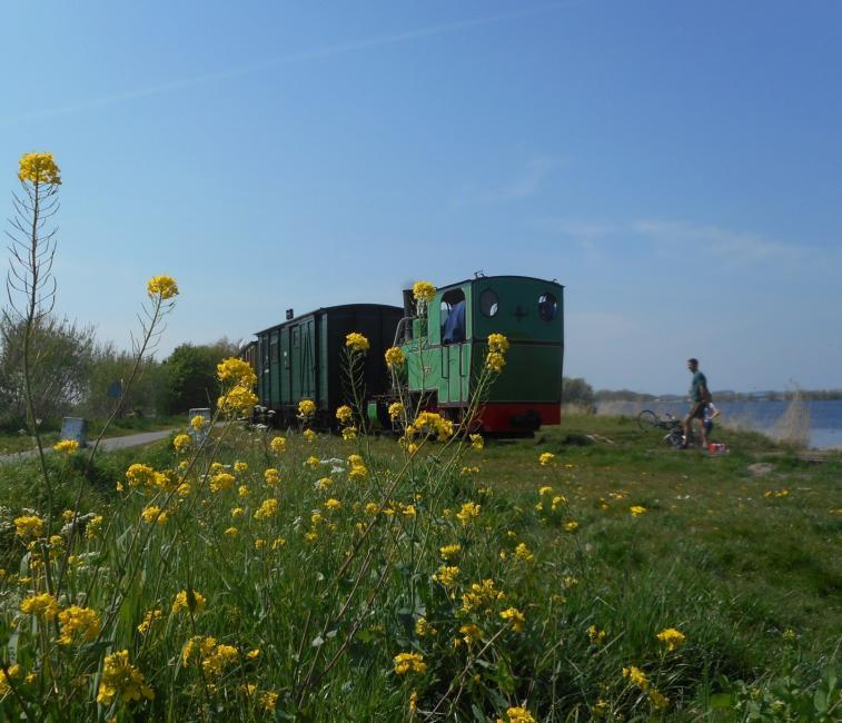 Het treintje op de terugweg langs het meer.