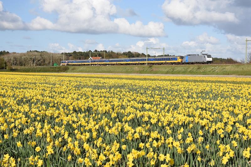Bij Hillegom is de spoordijk prominent in het landschap aanwezig. Ter hoogte van de Nieuweweg is op 17 april 2016 een omgeleide Beneluxtrein op weg naar Leiden. Achter de trein is nog net het dak te zien van de twee huisjes die aan de oostkant van de overweg staan.