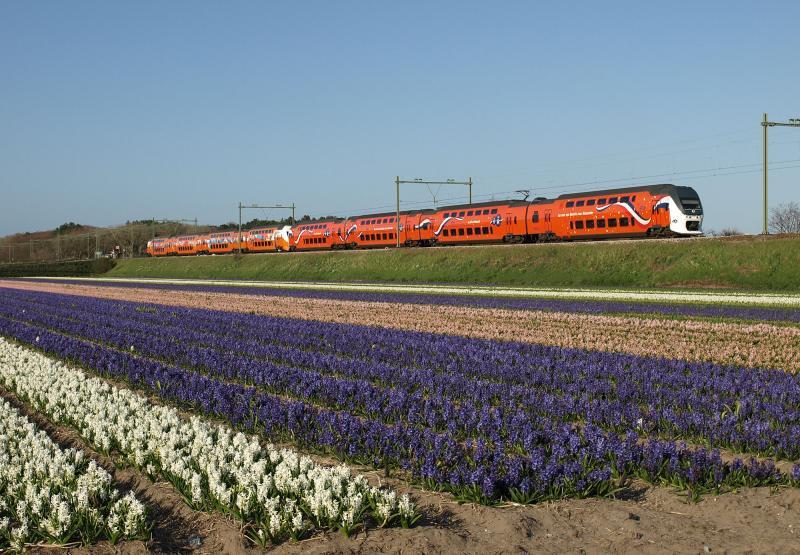 Terug naar de westkant. Op 29 april 2013 reden de hele dag de Olympische VIRM 9525 en de Koningstrein 9520 tussen Amsterdam, Den Haag en Dordrecht. Het moest er een keer van komen dat de beide treinstellen werden gekoppeld. En dat gebeurde. Aan het eind van de middag zijn de twee oranje treinstellen ter hoogte van de Nieuweweg onderweg naar Leiden.