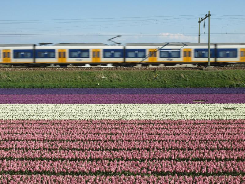 Vandaag de dag rijden er eigenlijk alleen nog VIRM- en SLT-treinstellen over de Oude Lijn door de Bollenstreek. De VIRM′s in de dienst van Amsterdam naar Den Haag en Dordrecht, de SLT′s in de stoptreinen van Haarlem naar Den Haag CS, met tussenstops in Hillegom en Voorhout. Als je alle treinen al hebt gefotografeerd, wordt het tijd voor wat kunstzinniger opnamen...
