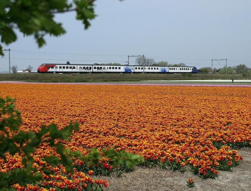 """""""Stilstaan bij Vrijheid"""" staat er in grote letters op het treinstel Plan T dat in 2010 dienstdeed als rijdende expositieruimte ter gelegenheid van de 65e viering van de bevrijding. Bij de Pastoorslaan, iets ten noorden van het station Hillegom, is het treinstel vastgelegd tijdens een rit van Haarlem naar Den Haag. Deze foto is nu niet meer mogelijk. Om redenen die waarschijnlijk alleen bekend zijn bij het Opperwezen, heeft ProRail besloten een hek te plaatsen OP, in plaats van aan de voet van de spoordijk, waardoor dit uitzicht definitief is verprutst. Aan de zuidkant van de spoorwegovergang in de Pastoorslaan/Loosterweg staan de groene hekken wel aan de voet van de spoordijk."""