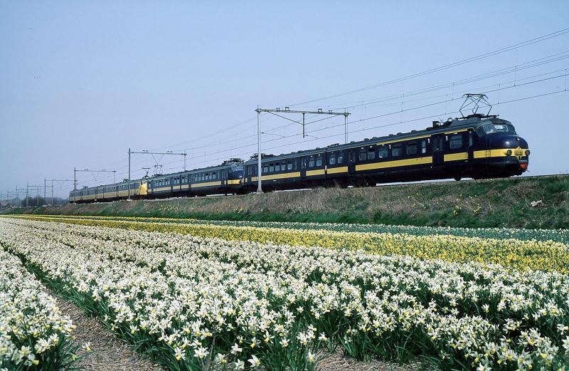 Het was een mooie dag in het voorjaar van 1986; het laatste voorjaar waarin de Beneluxtreinen via de Oude Lijn van Amsterdam naar Leiden reden. Met de zomerdienstregeling van dat jaar werd deze dienst verlegd naar de kort hiervoor in gebruik genomen Schiphollijn. Aan het eind van de middag is een lange spitsuurtrein met twee blauwe Benelux-hondekoppen en een vierdelig coach-stel onderweg naar Leiden.