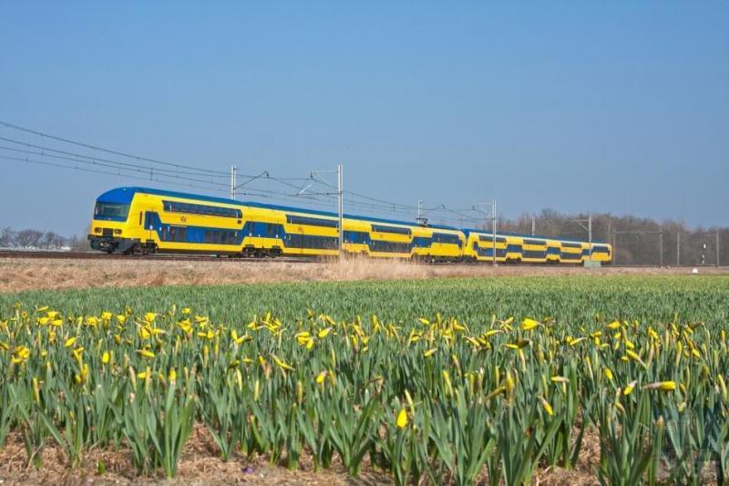 Als je tegenwoordig in een trein van NS stapt, is de kans groot dat het een dubbeldekker is. Het aantal reizigers is de laatste jaren door verschillende oorzaken dermate toegenomen, dat dit treintype de vervoersvraag het beste aankan. NS begon met dubbeldeksrijtuigen getrokken door een eloc waarna de dubbeldekstreinstellen verschenen. Als uitvloeisel van de strategie van NS om zo veel mogelijk met treinstellen te rijden, werden uit de eerste serie dubbeldeksrijtuigen en reeds bestaande motorwagens nieuwe treinstellen geformeerd, met een fraai nieuw en modern interieur. Op 15 maart 2012 zien we zo'n treinstel, DDZ genaamd, ter hoogte van Warmond op weg naar Den Haag, gefotografeerd door Maarten Otto.